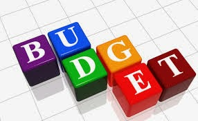 2014 BUDGET IS WASTEFUL, SHORTSIGHTED AND EXTRAVAGANT - ROL Collective